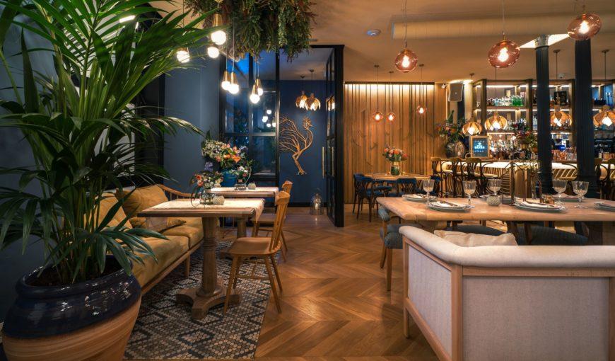 Proyecto restaurante rolenka bistro arsitek for Proyecto cocina restaurante